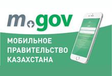 Мобильное правительство